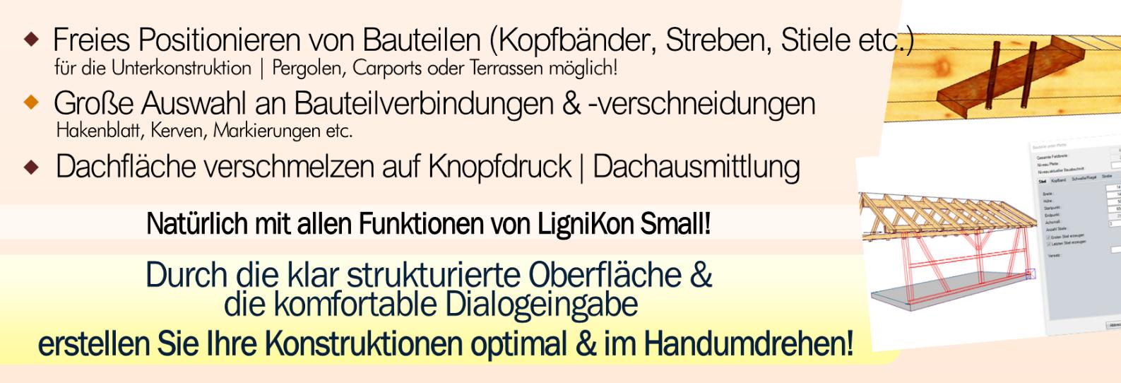 LIGNIKON Large V14 - zur Jahresmiete