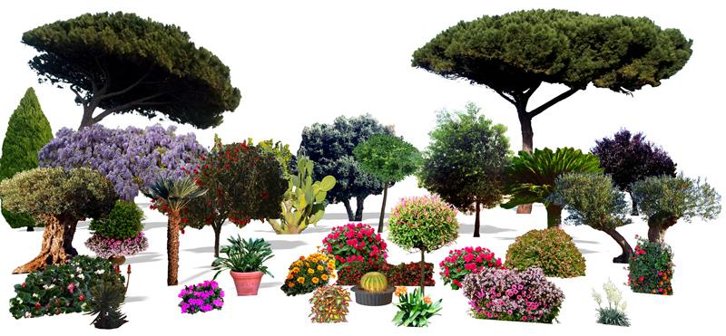 3D Paket Flora Plus - ArCon Zubehör - VOLLVERSION